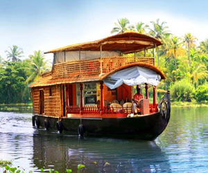 Kerala Honeymoon Package Celebration in Paradise